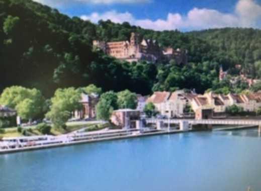 Penthouse mit Blick auf Schloss und Neckar