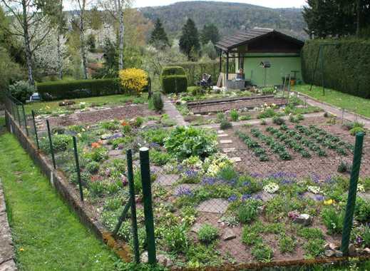 Liebhaber Garten, EINZIGARTIG, großes gemauertes Gartenhaus, reichlich Obst und Gemüse