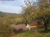 Reiterhof in Alleinlage - Aussiedlerhof 18