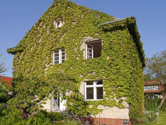 Freistehendes Wohnhaus von 1928 in Lichterfelde-West - Bild 3