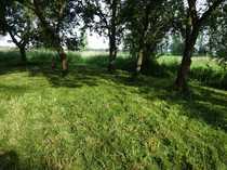 Naturbelassener Bauplatz im ländlichen Bülkau