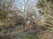 Gartengrundstück in Dahme
