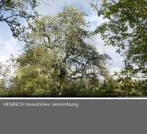 Freizeitgrundstück in Frankfurt-Sossenheim