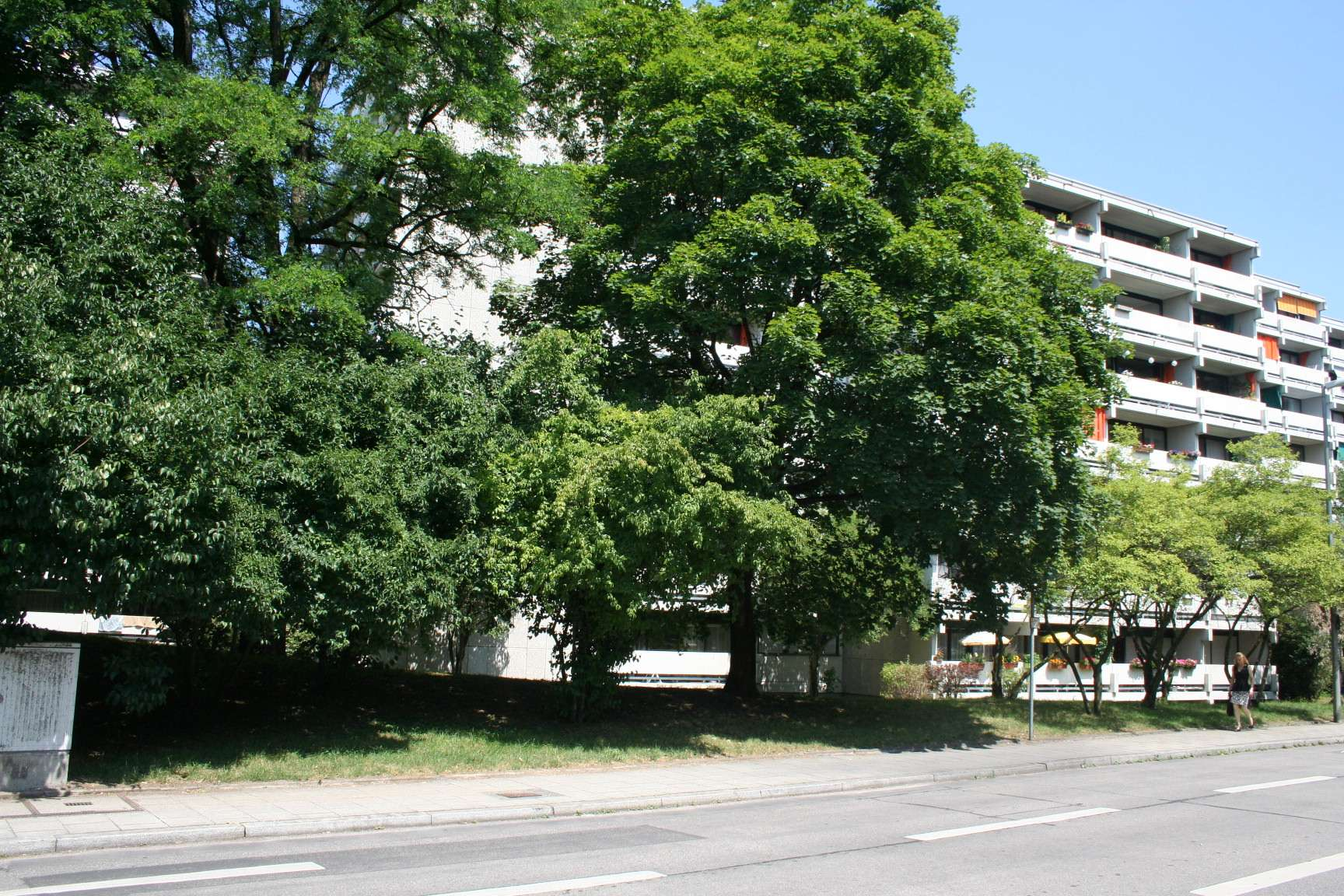 Schöne 4-Zimmer-Wohnung mit Südbalkon und Bergblick direkt am Olympiapark von Privat in Neuhausen (München)