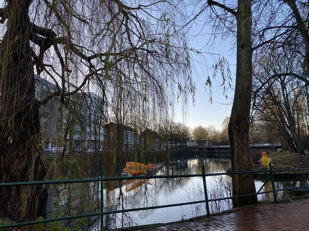 Direkt um die Ecke: Stadtsee