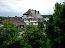 Pfiffiges - modernes Wohnen am Ortsrand -