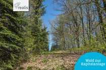 Erholung pur Waldgrundstück für den