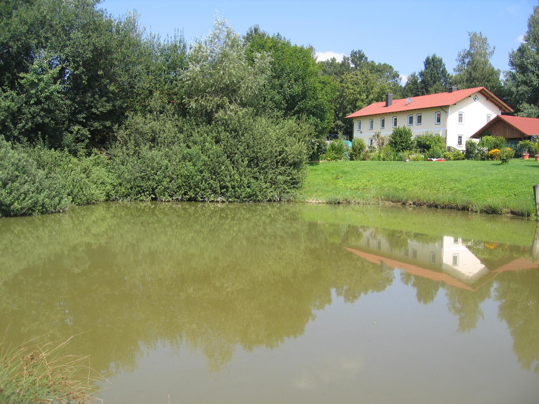 Wohnung mit Garten in Velden (Landshut)