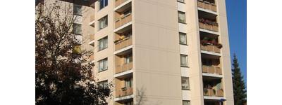 Einladende 3-Zimmer-Wohnung in ruhiger Hausgemeinschaft