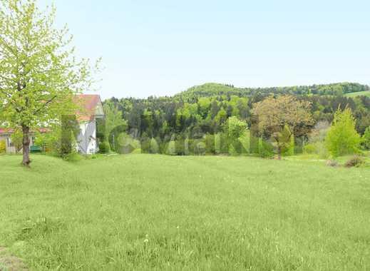 Weitläufiges Grundstück mit unverbautem Naturblick im Bayerischen Wald