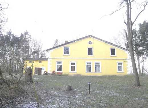 Idyllischer Resthof zum renovieren, m. kl. Wald, Alleinlage i.d. Nordsee u. Urlaubsregion bei Marne