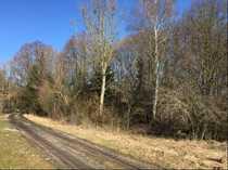 Wald- Freizeitgrundstück bei Schwindegg
