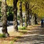Seitenstraße