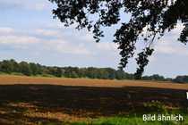 Bild Ca. 14,5 ha Ackerland bei Gerswalde in der Uckermark