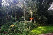 Naturnahes Baugrundstück in ländlicher Umgebung