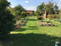 REDUZIERT Gepflegter Kleingarten mit massivem