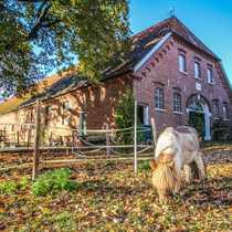Riesiger Bauernhof Resthof in ruhiger
