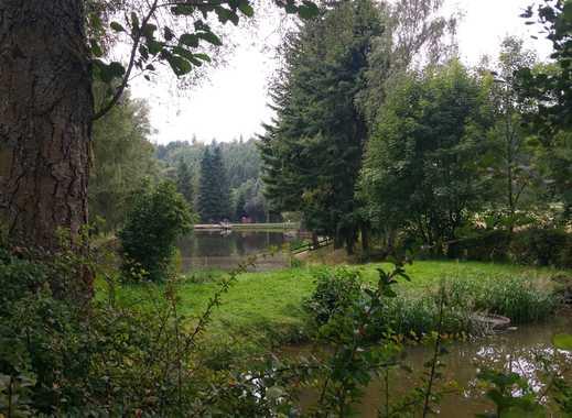 Einmaliger Fischweiher. Wunderschönes Grundstück mit Bachlauf und See in Alleinlage
