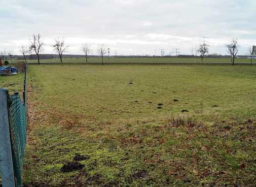 Ein eigener Reiterhof auf diesem weitläufigem Grundstück in Thierbach