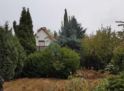 Großes Grundstück mit Einfamilienhaus in grüner Lage