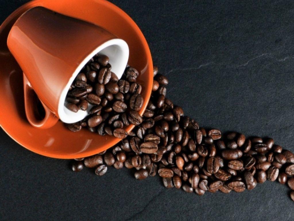 cafe bistro mieten pachten düs