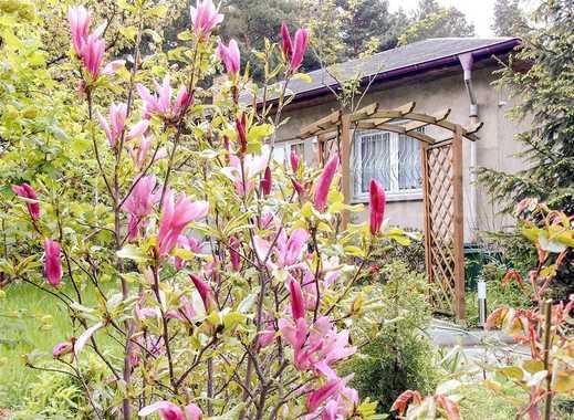 Schöner Bungalow mit Gästehaus zu verkaufen - Waldgrundstück!