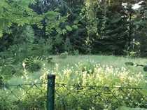 Zentrums- und naturnah leben in