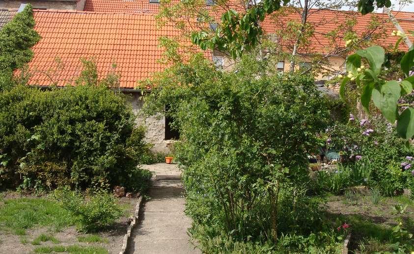 Blick vom Garten zum Haus