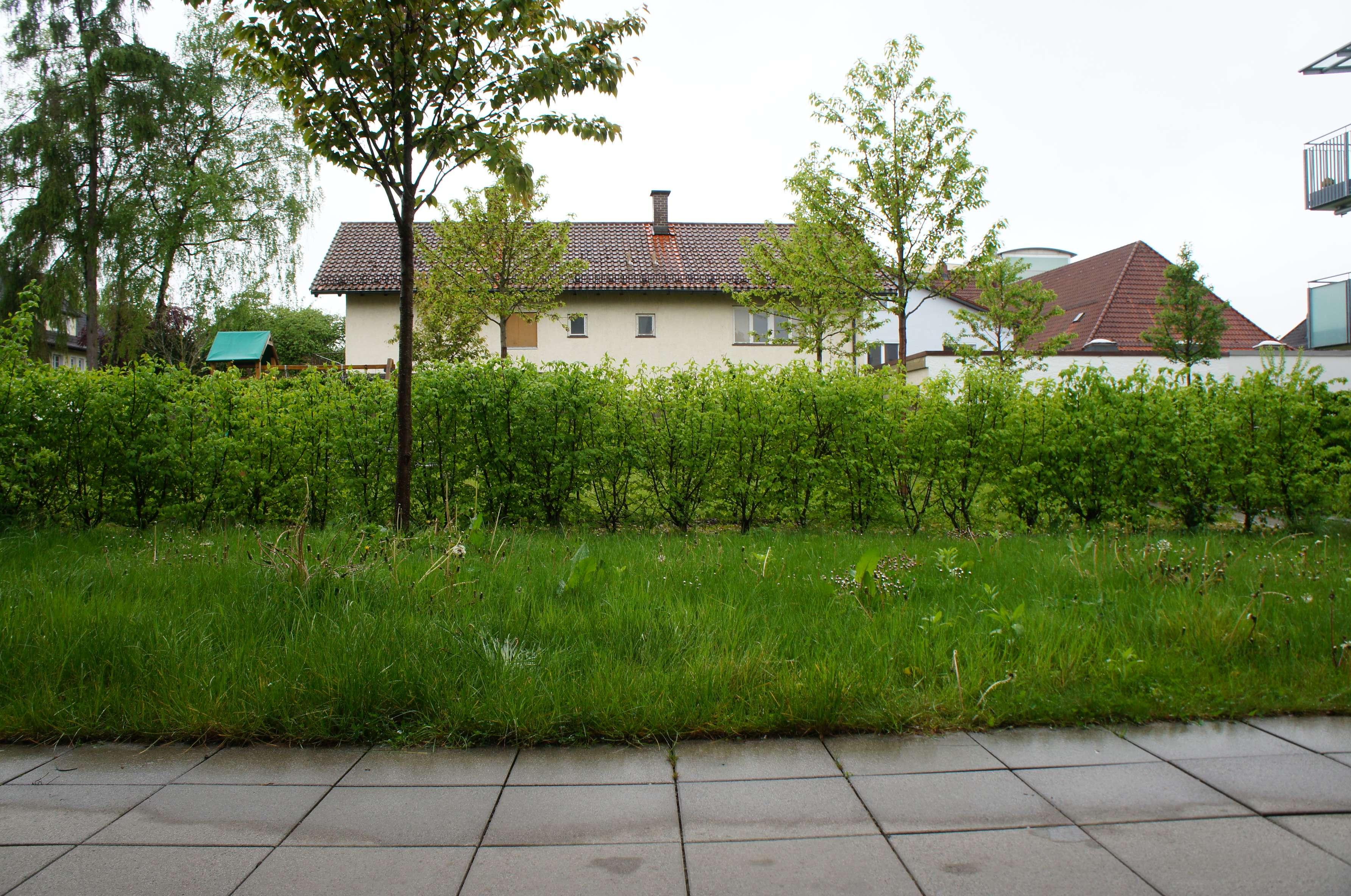 Erdgeschoss - Schöne 3-Zimmer-Wohnung mit eigenem Garten in Bahnhofsnähe in Mühldorf am Inn