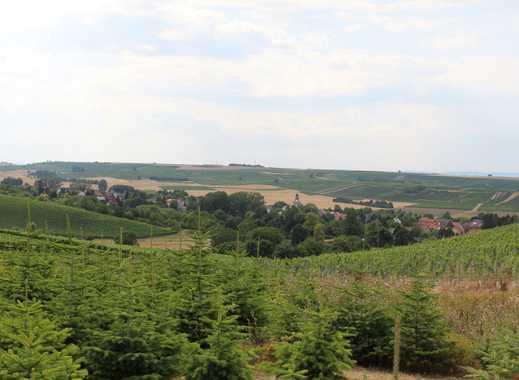 Winterschnäppchen - Abrissgrundstück im alten Ortskern von Saulheim