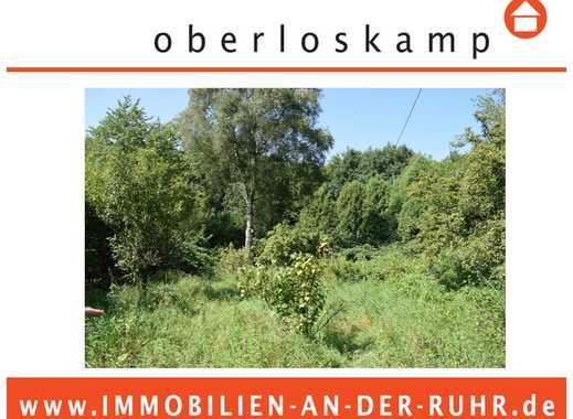 Rd. 4.000 m² Grundstück mit Einfamilienhaus in Alleinlage am Waldrand & Feldrand!