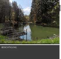 Natur Pur Teichanlage in absoluter