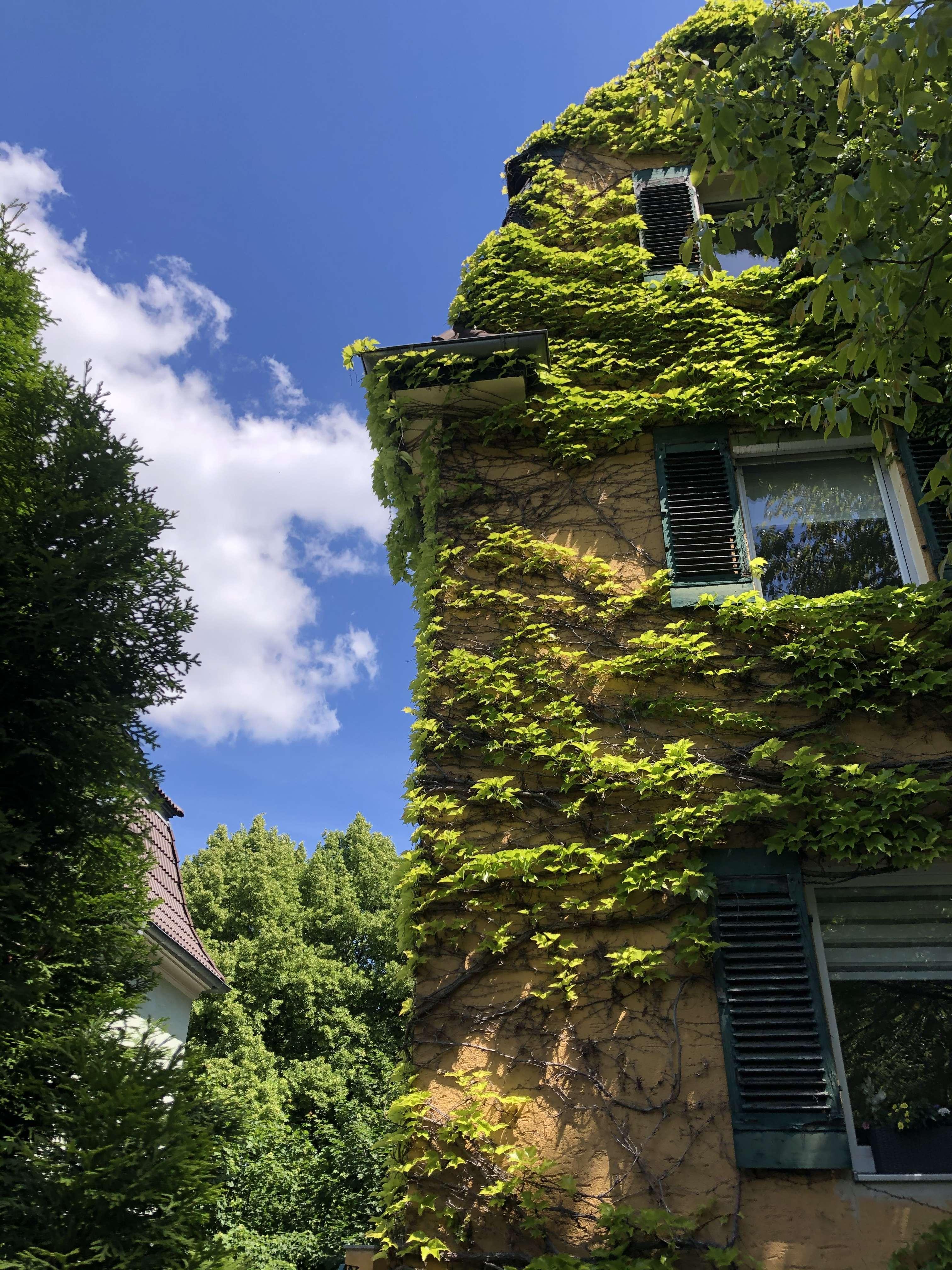 Ansprechende 3,5-Zimmer-Wohnung mit Balkon und EBK in Regensburg in