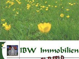 gelbe Blümchenwiese