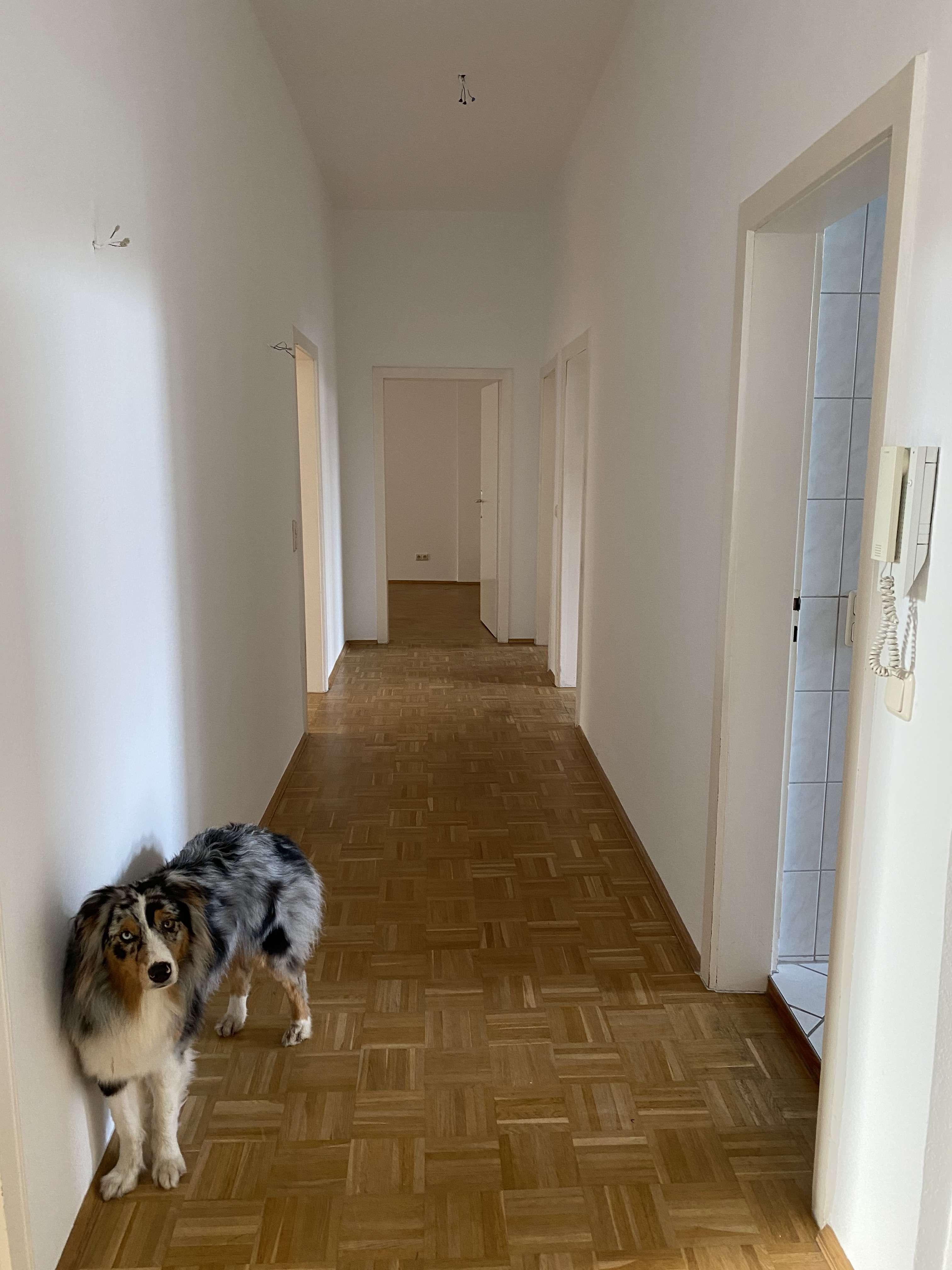 Vollständig renovierte 4-Raum-Hochparterre-Wohnung mit Balkon und Einbauküche in Aschaffenburg in