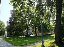 Im martini-Park