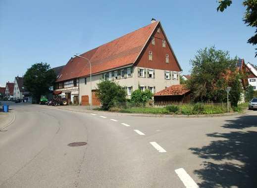 Bauernhaus mit großer Scheune auf tollem Grundstück