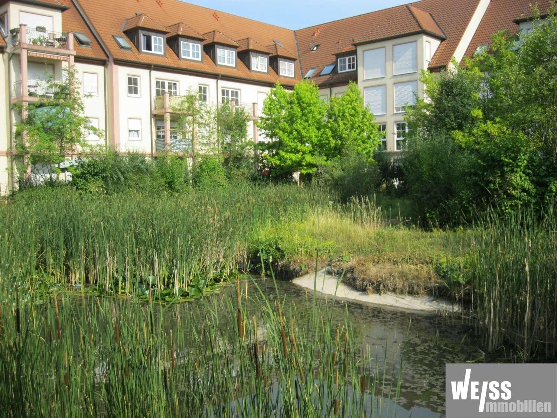 Ruhige 1 Zimmer Wohnung in Wohnanlage mit Teich in