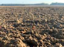7 ha Landwirtschaftsfläche in MV