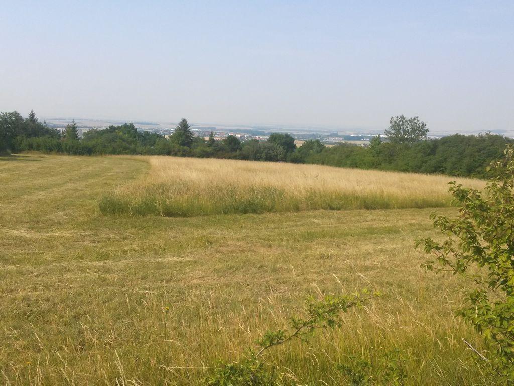 Grundstück Blickrichtung Nordo