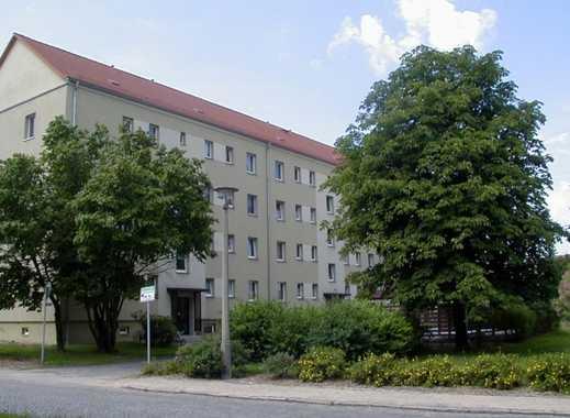 freundliche Wohnung in Kamenz-Ost zu vermieten