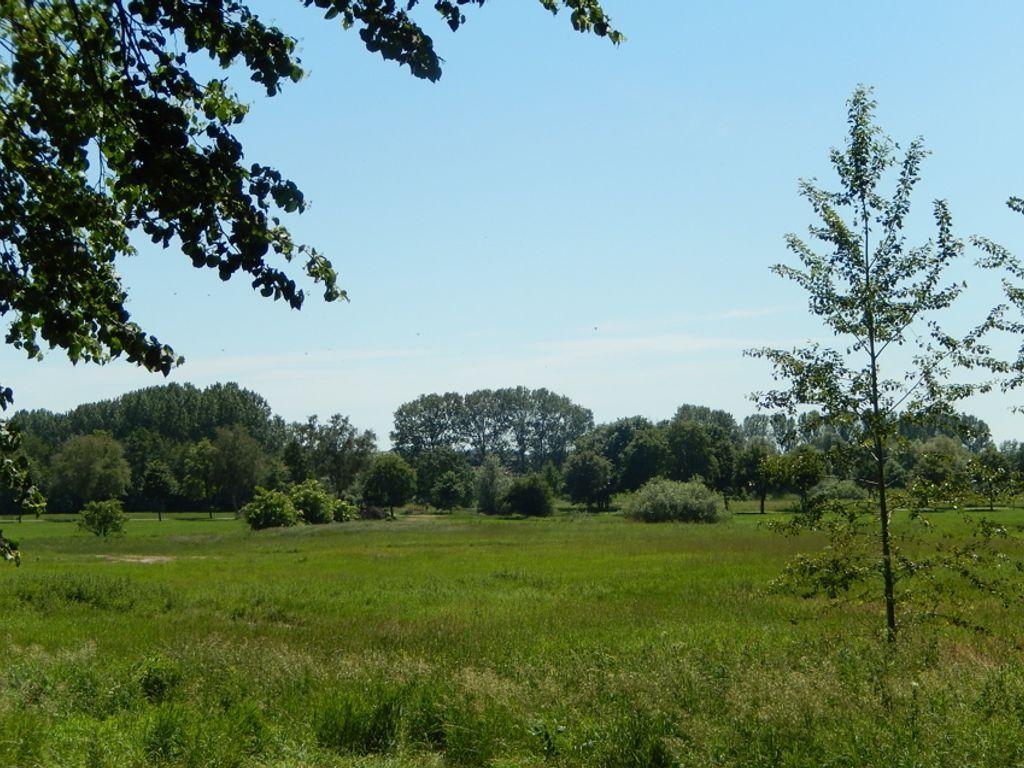 Baugrundstück in Stavenhagen k