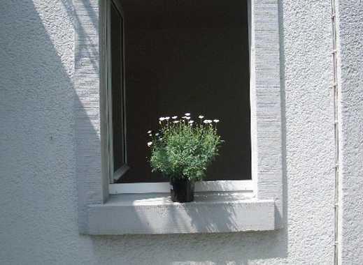 gepflegte 2-Zimmer Wohnung in Mainzer Stadtvilla