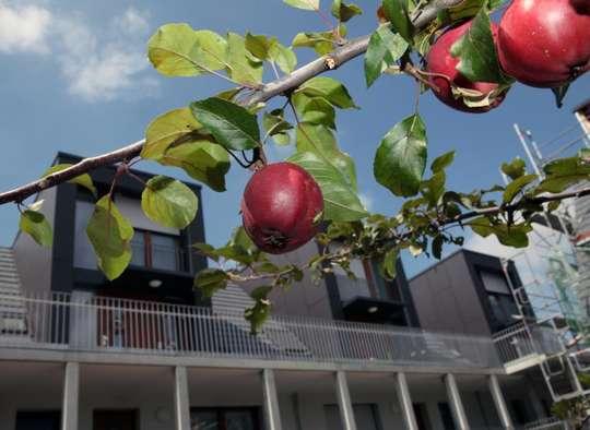 hwg Plus - Großzügige, barrierearme 2-Zimmer Wohnung mit Balkon und Aufzug in der Südstadt!
