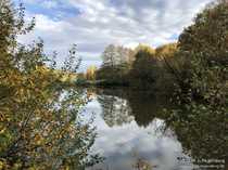 Freizeitgrundstück mit 2 Fischweihern