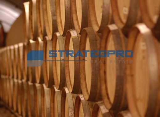 Weinanbaufläche zu verkaufen