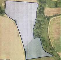 Landwirtschaftliche Grundstücke Verkauf von Grünland