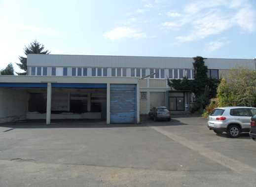 1.250 m² Hallenfläche plus 220 m² Büro plus Freifläche