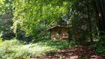 erschlossenes Baugrundstück Waldsiedlung Trippstadt