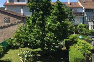 3 Zimmer Wohnung in Lörrach (Kreis)